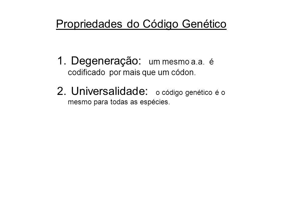Propriedades do Código Genético