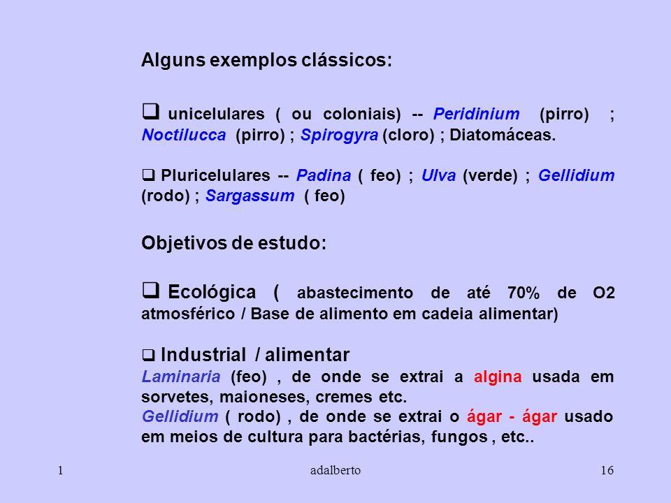 Alguns exemplos clássicos: