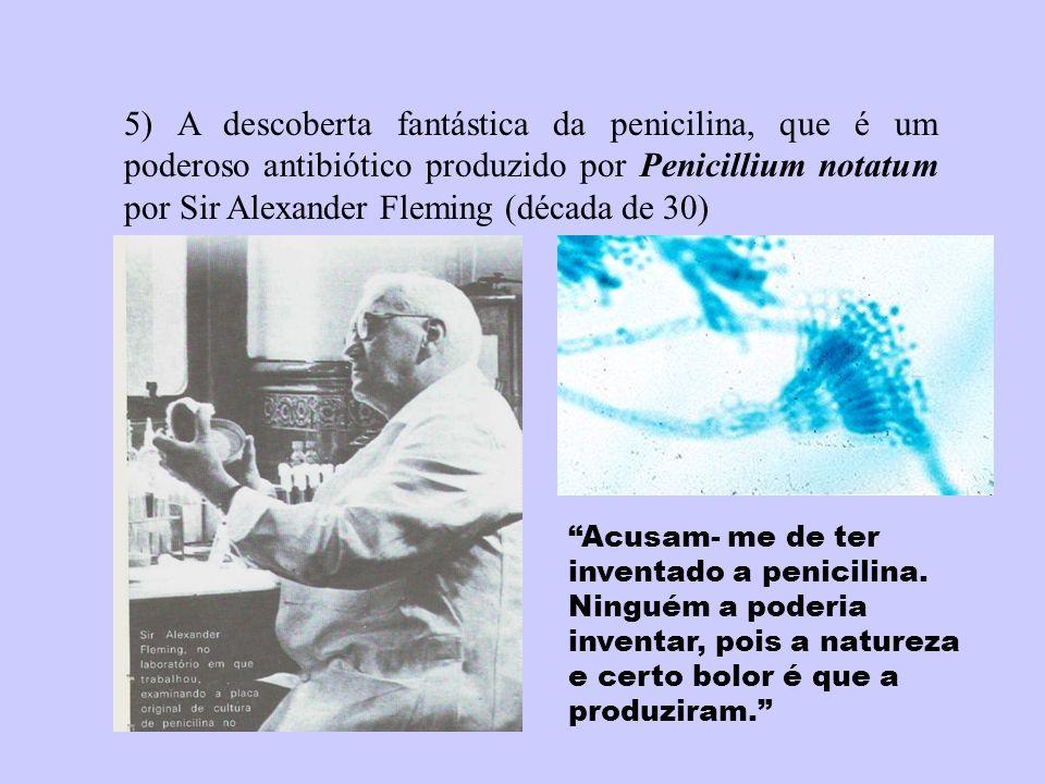 5) A descoberta fantástica da penicilina, que é um poderoso antibiótico produzido por Penicillium notatum por Sir Alexander Fleming (década de 30)