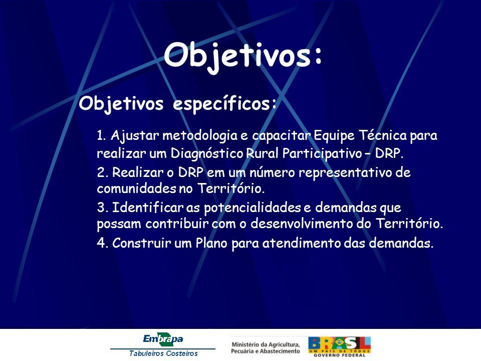 Objetivos: Objetivos específicos: 1. Ajustar metodologia e capacitar Equipe Técnica para realizar um Diagnóstico Rural Participativo – DRP.