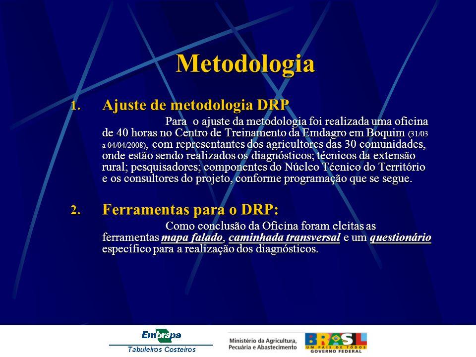 Metodologia Ajuste de metodologia DRP Ferramentas para o DRP: