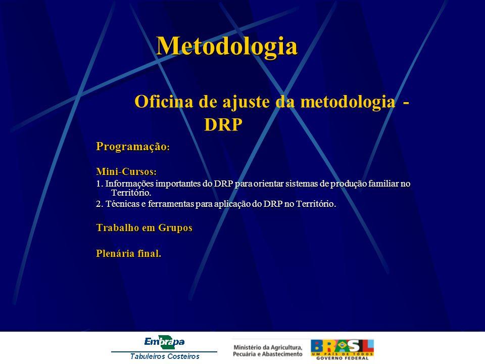 Metodologia Oficina de ajuste da metodologia - DRP