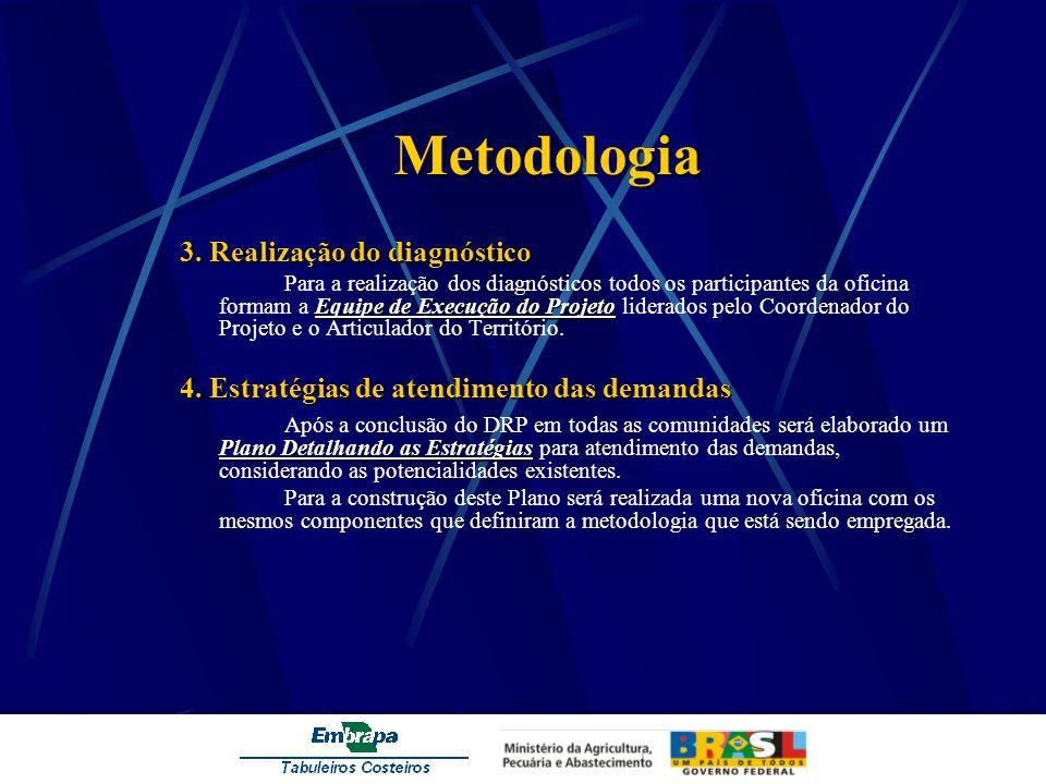 Metodologia 3. Realização do diagnóstico