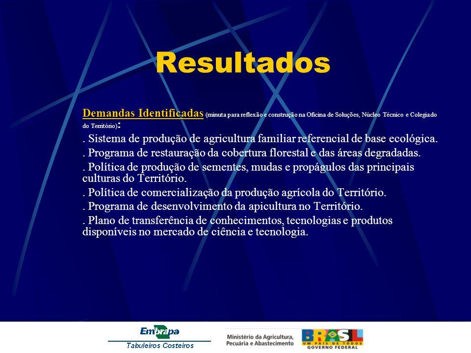 Resultados Demandas Identificadas (minuta para reflexão e construção na Oficina de Soluções, Núcleo Técnico e Colegiado do Território):
