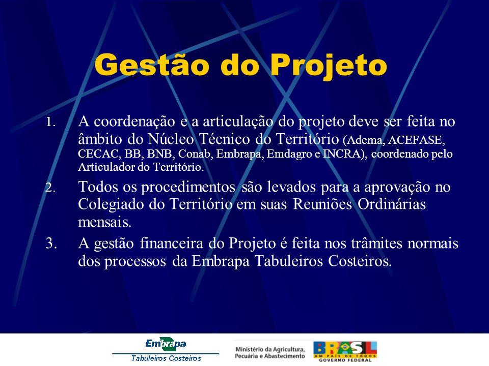 Gestão do Projeto