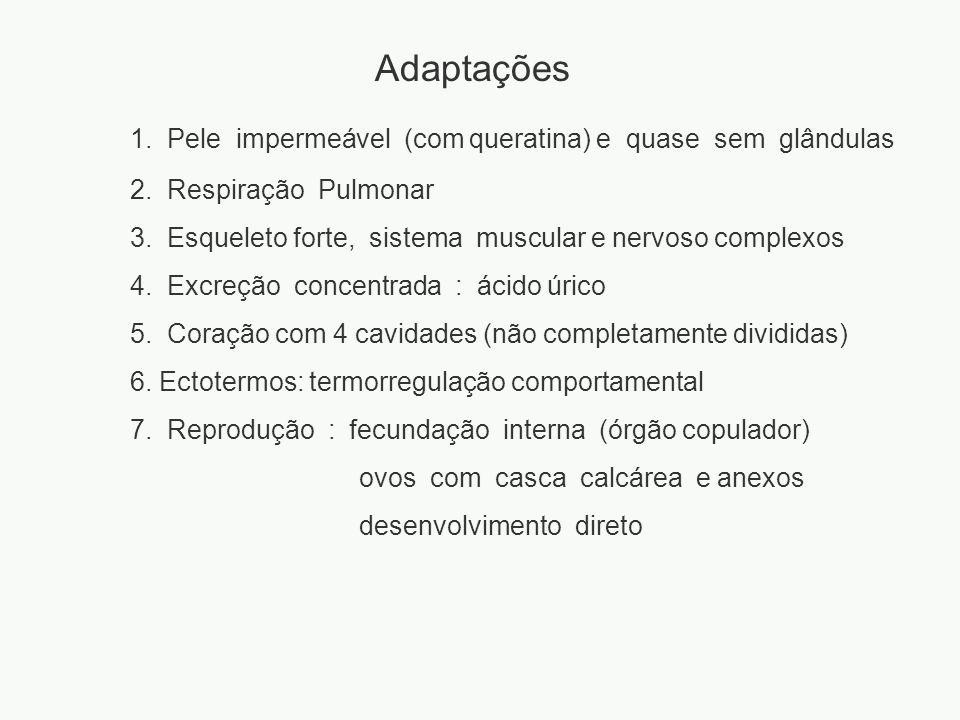 1. Pele impermeável (com queratina) e quase sem glândulas