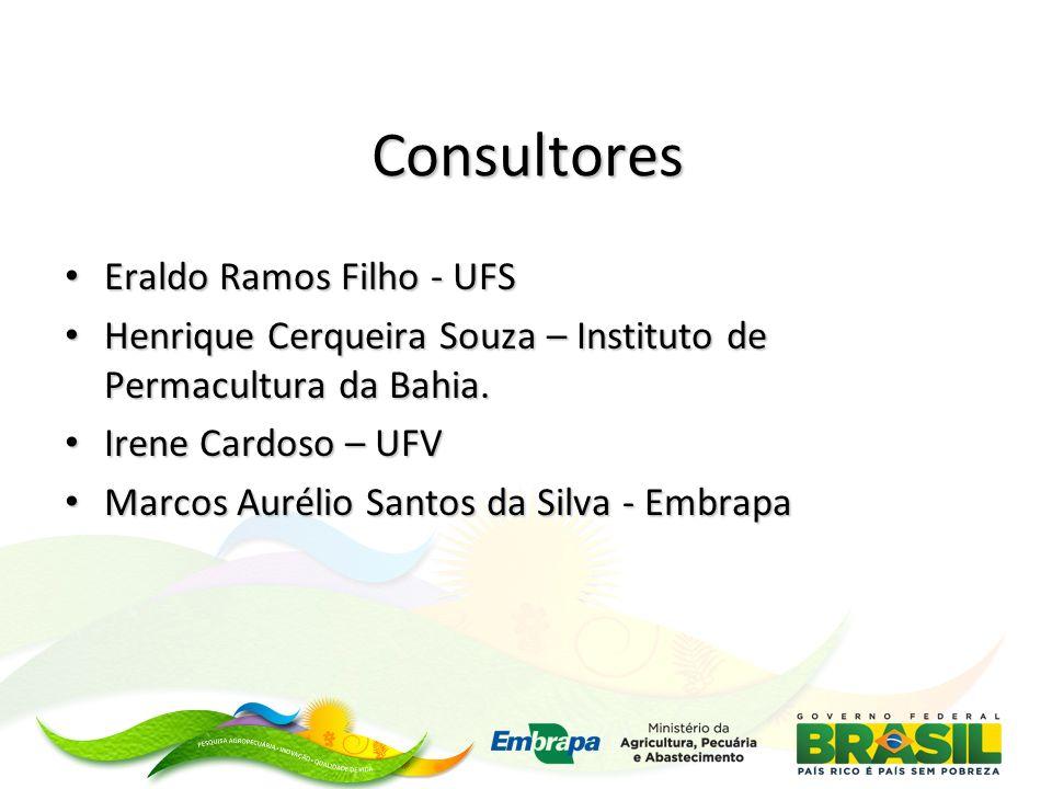 Consultores Eraldo Ramos Filho - UFS