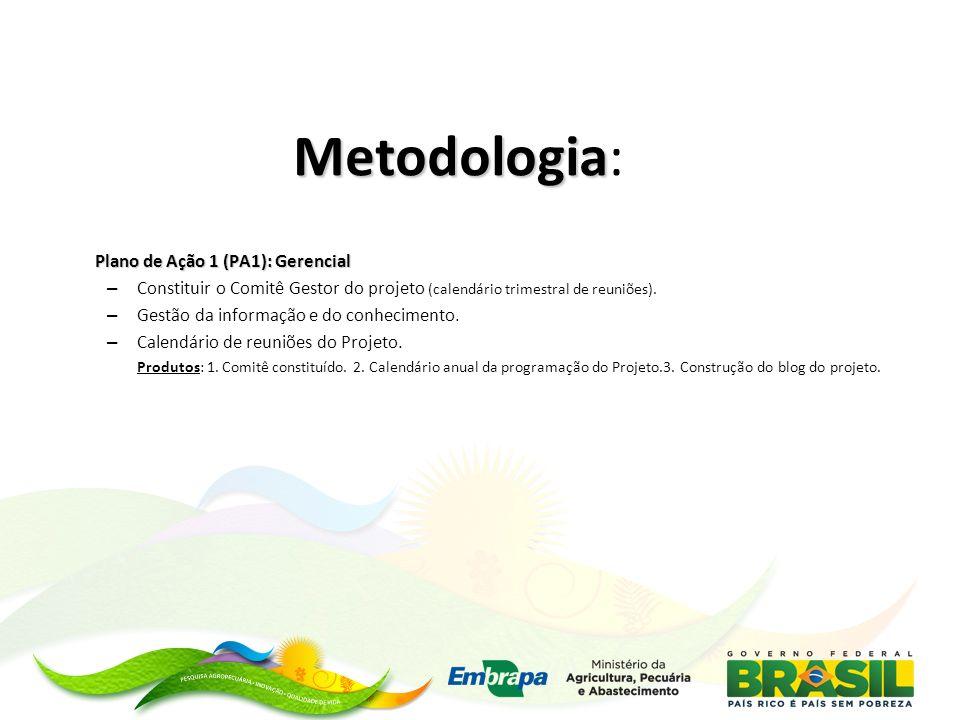 Metodologia: Plano de Ação 1 (PA1): Gerencial
