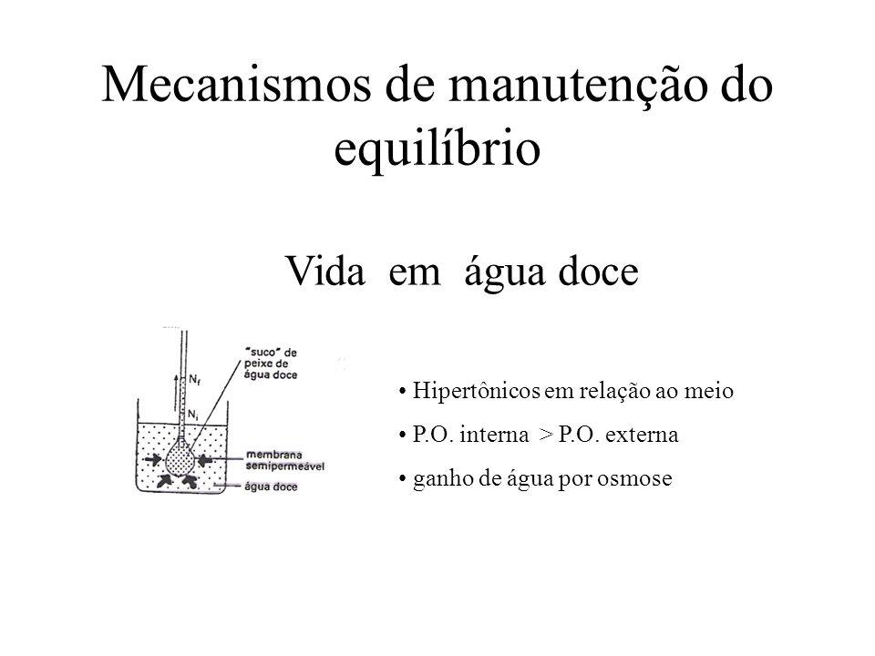 Mecanismos de manutenção do equilíbrio