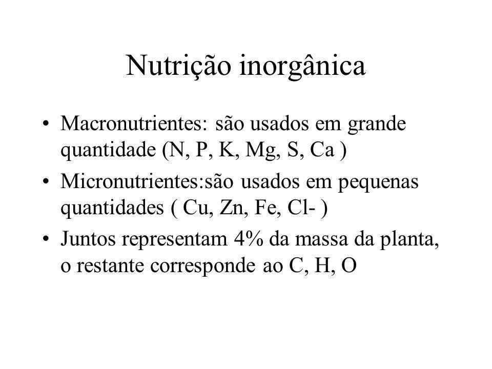 Nutrição inorgânica Macronutrientes: são usados em grande quantidade (N, P, K, Mg, S, Ca )