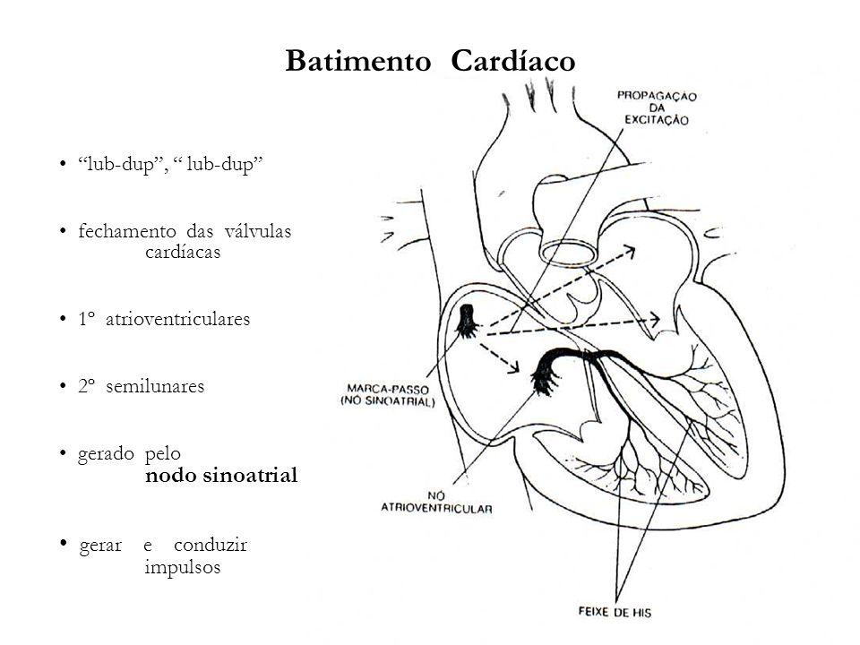 Batimento Cardíaco gerar e conduzir impulsos lub-dup , lub-dup