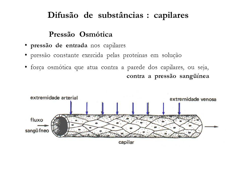 Difusão de substâncias : capilares