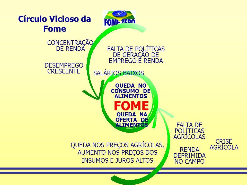 FOME Círculo Vicioso da Fome CONCENTRAÇÃO DE RENDA