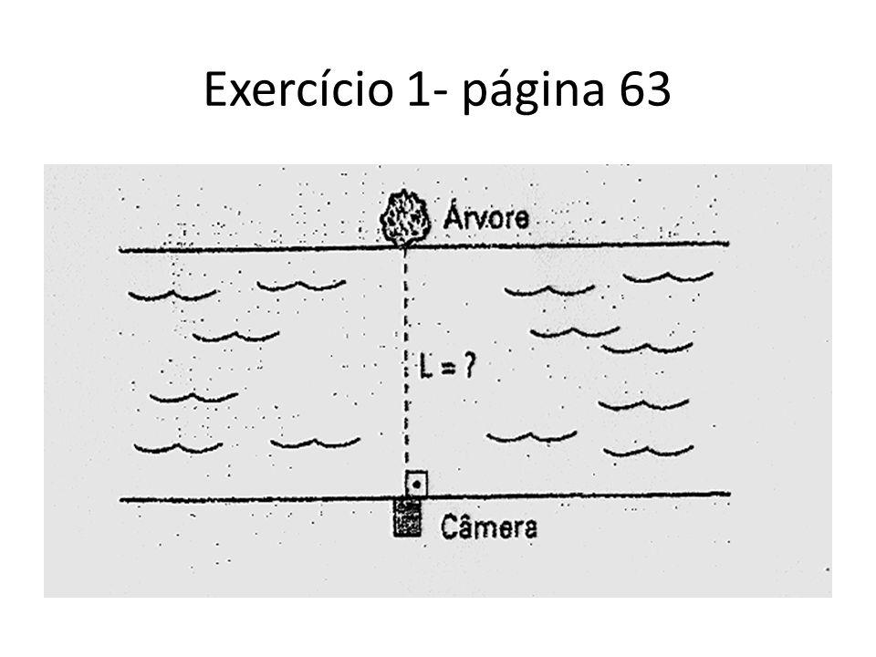 Exercício 1- página 63