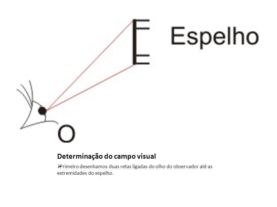 Determinação do campo visual