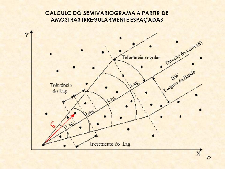 CÁLCULO DO SEMIVARIOGRAMA A PARTIR DE