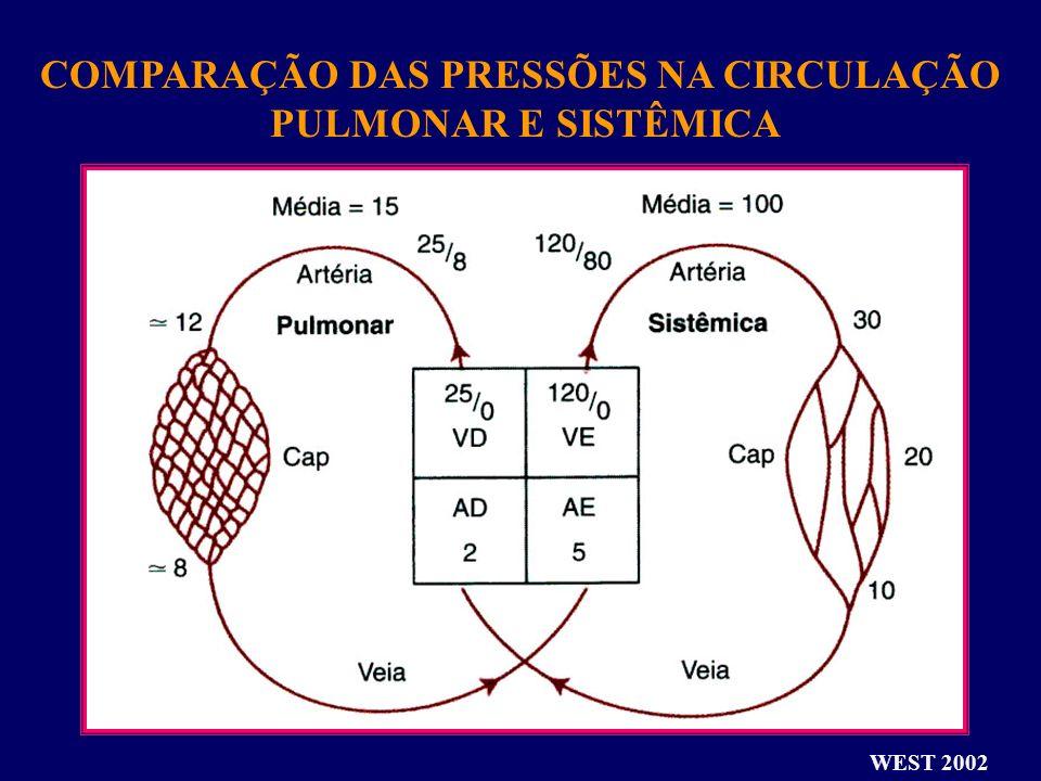 COMPARAÇÃO DAS PRESSÕES NA CIRCULAÇÃO
