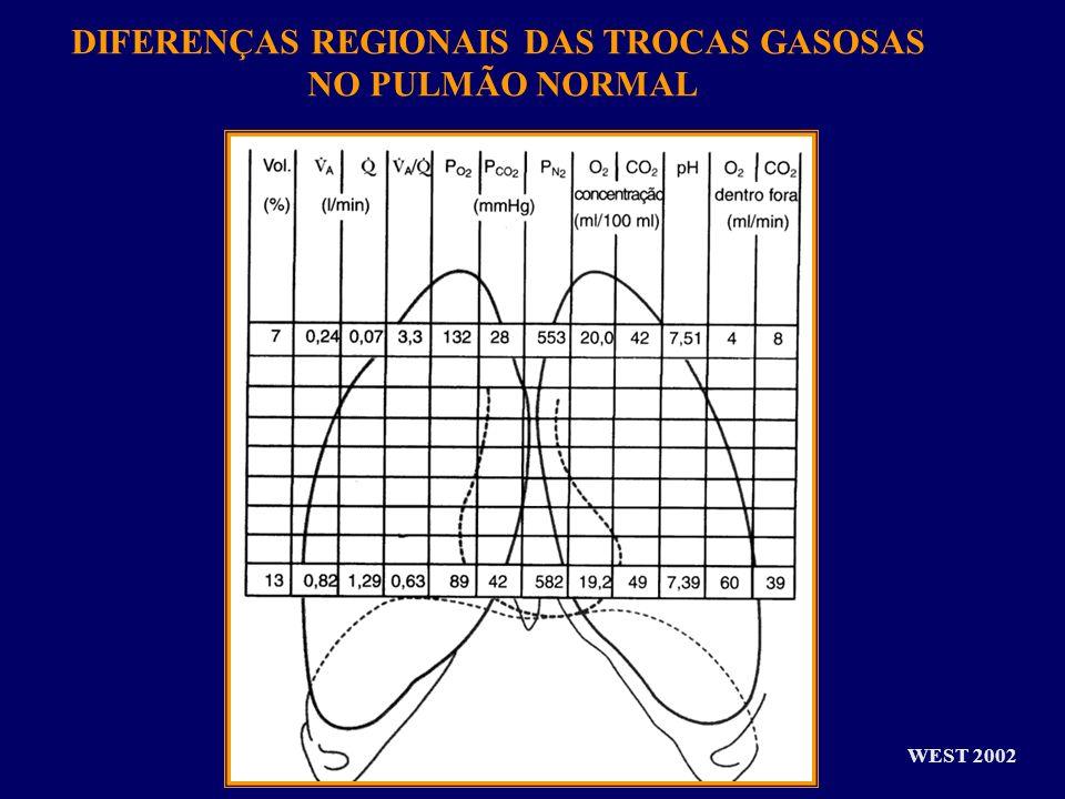 DIFERENÇAS REGIONAIS DAS TROCAS GASOSAS