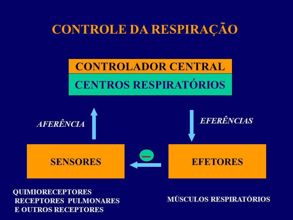 CONTROLE DA RESPIRAÇÃO CENTROS RESPIRATÓRIOS MÚSCULOS RESPIRATÓRIOS