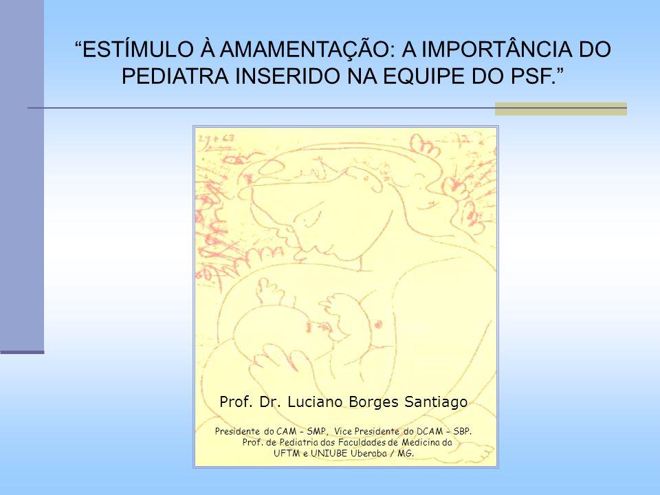 ESTÍMULO À AMAMENTAÇÃO: A IMPORTÂNCIA DO PEDIATRA INSERIDO NA EQUIPE DO PSF.