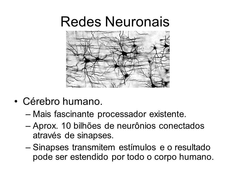Redes Neuronais Cérebro humano. Mais fascinante processador existente.