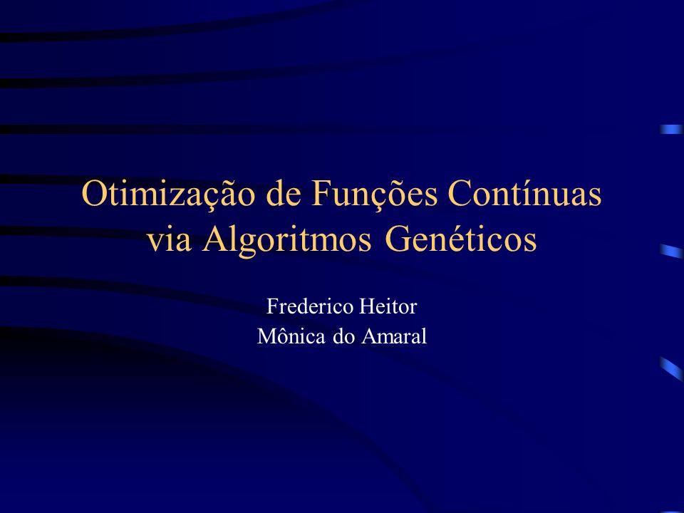 Otimização de Funções Contínuas via Algoritmos Genéticos
