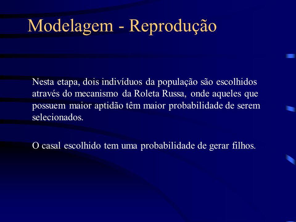 Modelagem - Reprodução