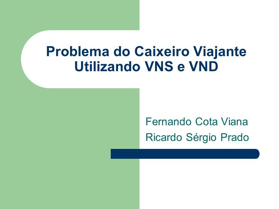 Problema do Caixeiro Viajante Utilizando VNS e VND