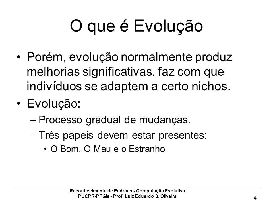 O que é EvoluçãoPorém, evolução normalmente produz melhorias significativas, faz com que indivíduos se adaptem a certo nichos.