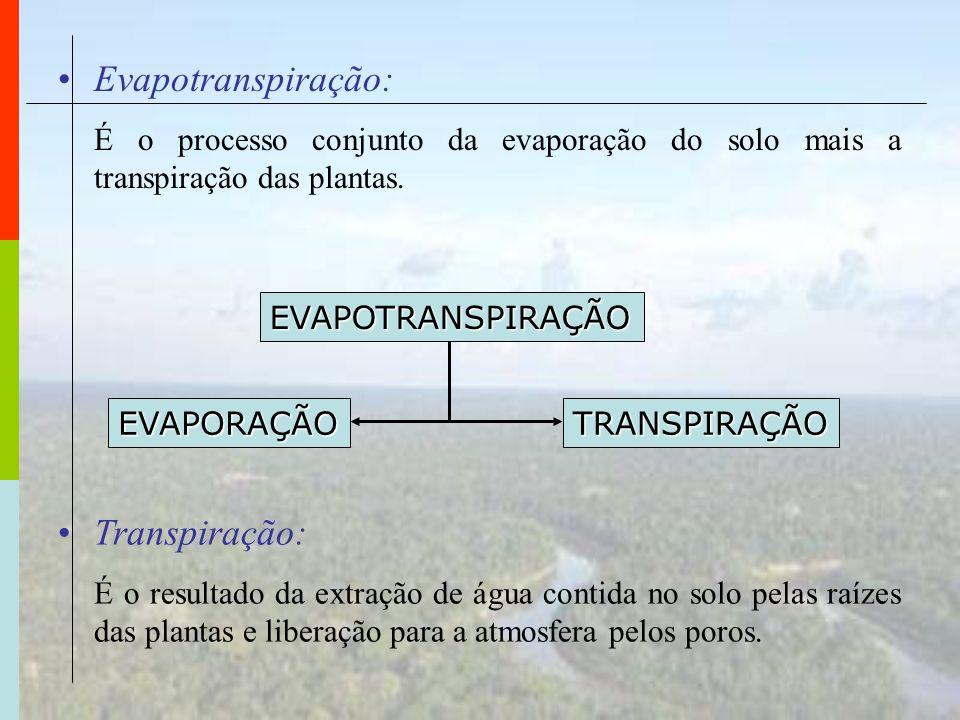 Evapotranspiração: Transpiração: