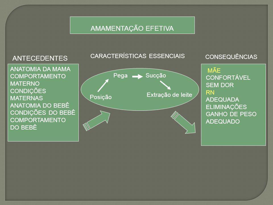 AMAMENTAÇÃO EFETIVA ANTECEDENTES CARACTERÍSTICAS ESSENCIAIS
