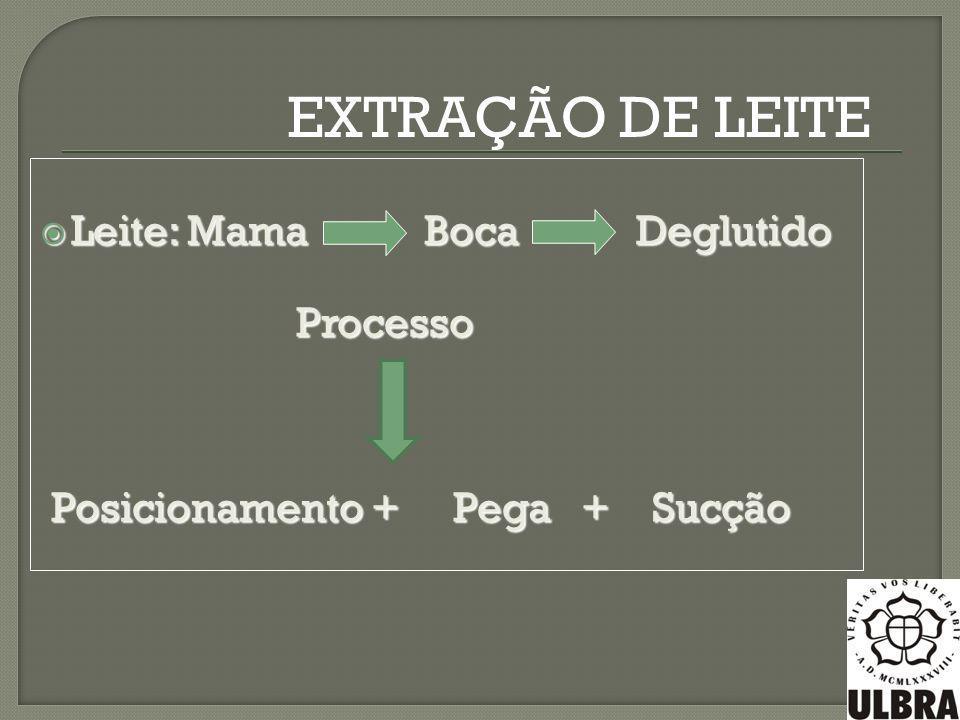 EXTRAÇÃO DE LEITE Leite: Mama Boca Deglutido Processo