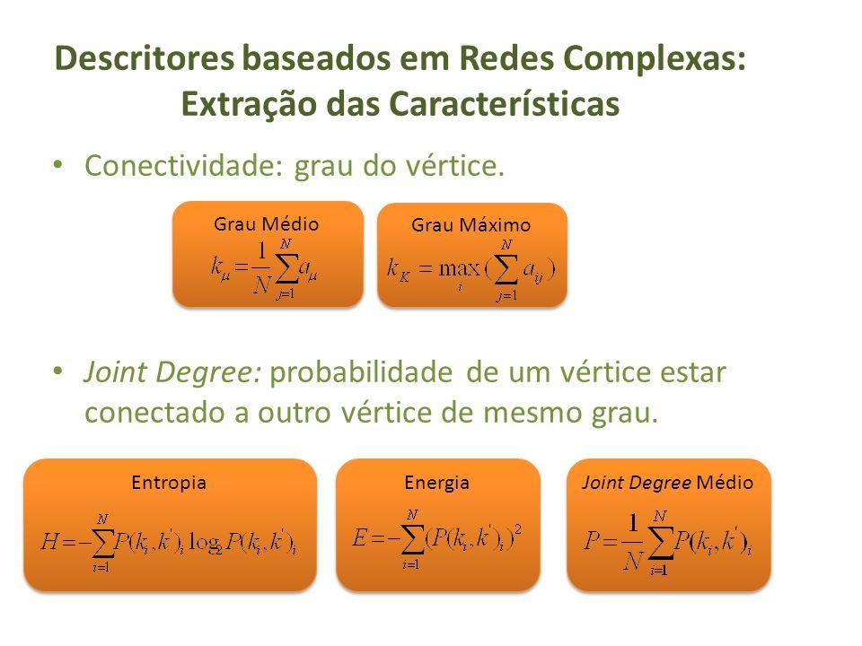 Descritores baseados em Redes Complexas: Extração das Características