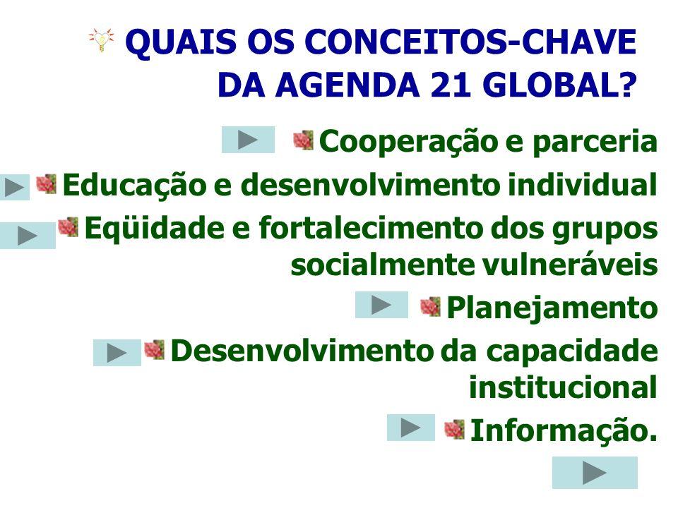 QUAIS OS CONCEITOS-CHAVE DA AGENDA 21 GLOBAL