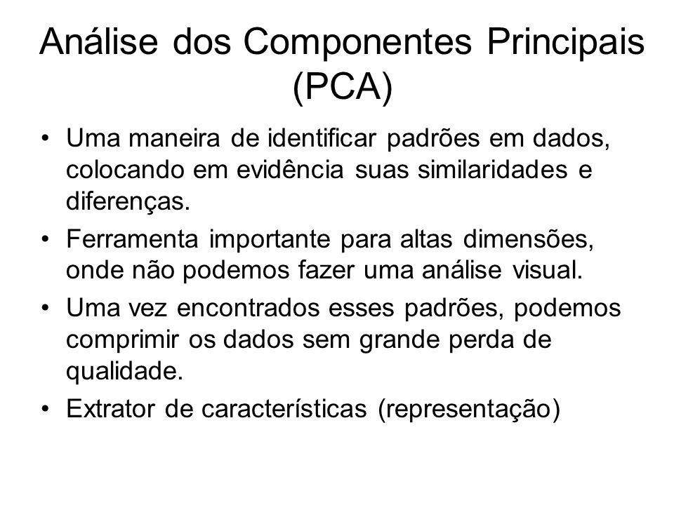 Análise dos Componentes Principais (PCA)