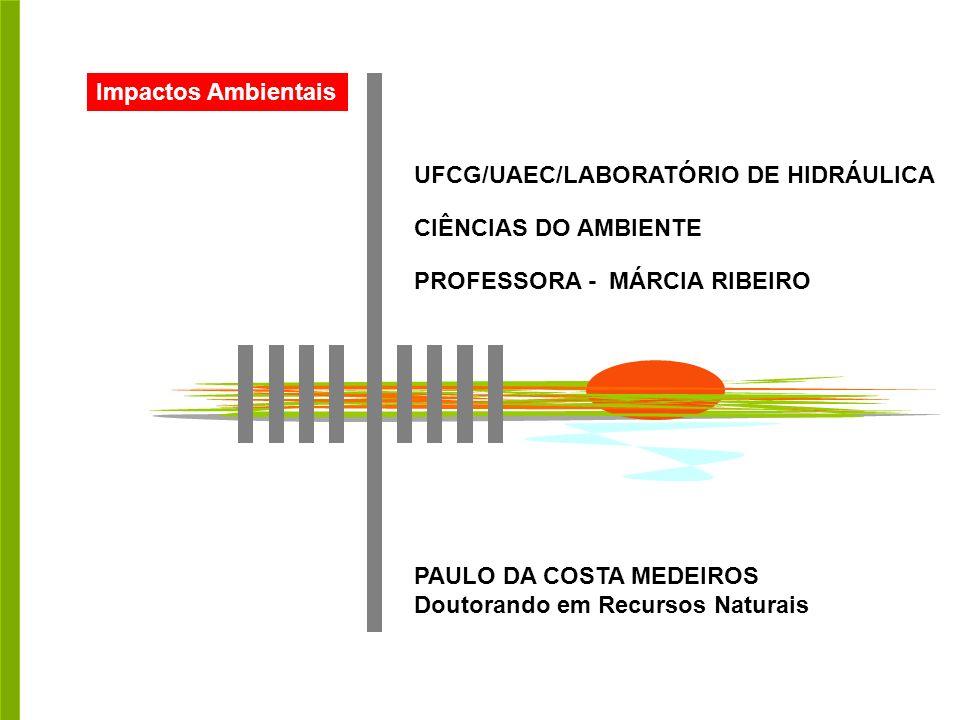 Impactos Ambientais UFCG/UAEC/LABORATÓRIO DE HIDRÁULICA. CIÊNCIAS DO AMBIENTE. PROFESSORA - MÁRCIA RIBEIRO.