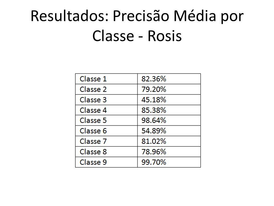 Resultados: Precisão Média por Classe - Rosis
