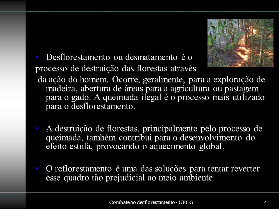 Combate ao desflorestamento - UFCG