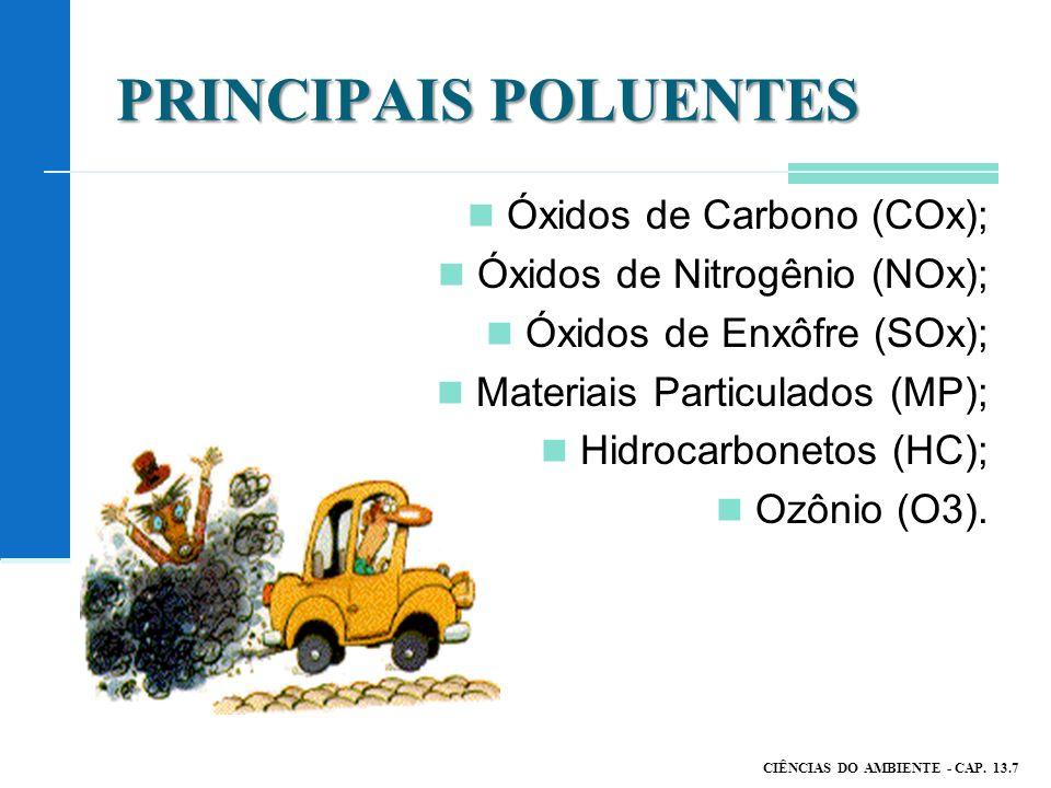 PRINCIPAIS POLUENTES Óxidos de Carbono (COx);