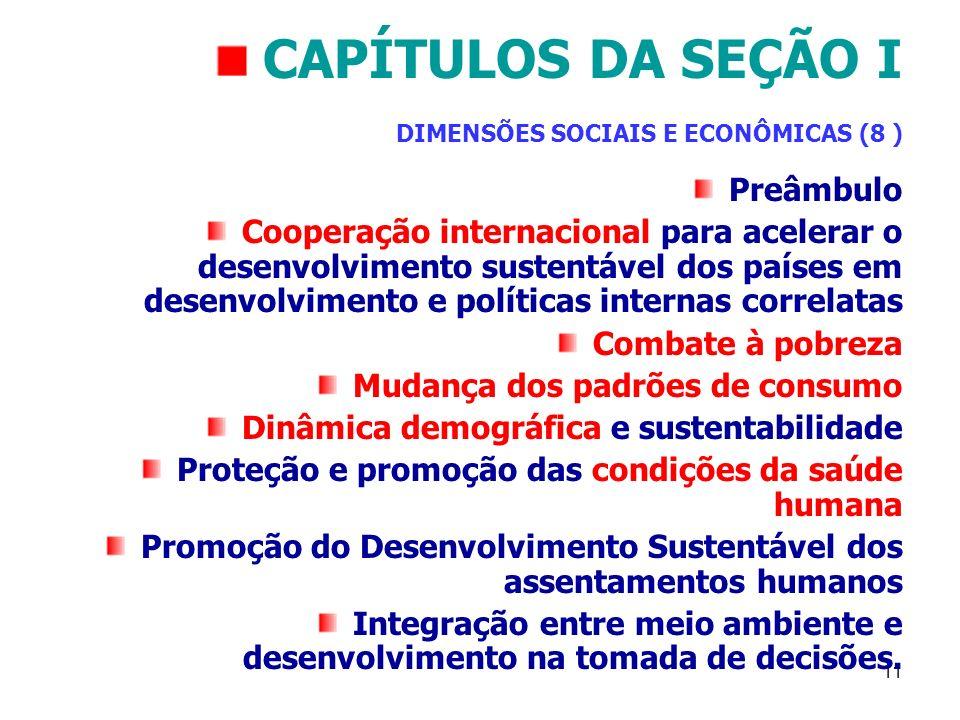 CAPÍTULOS DA SEÇÃO I DIMENSÕES SOCIAIS E ECONÔMICAS (8 )