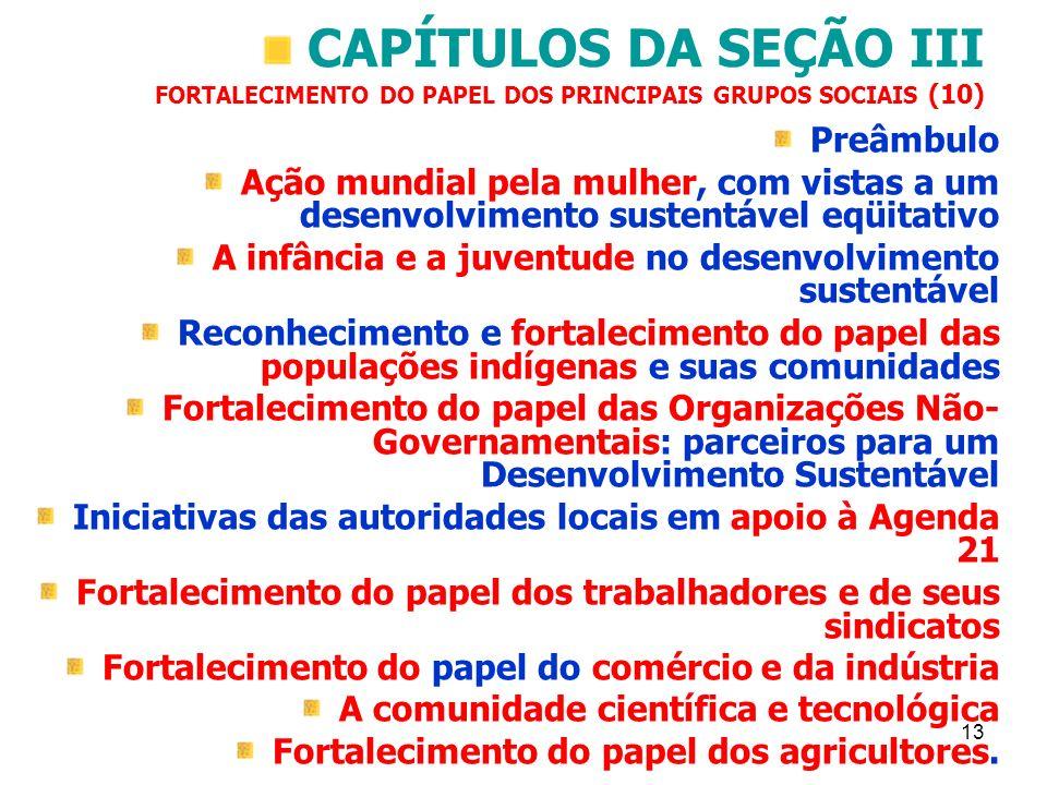 CAPÍTULOS DA SEÇÃO III FORTALECIMENTO DO PAPEL DOS PRINCIPAIS GRUPOS SOCIAIS (10)