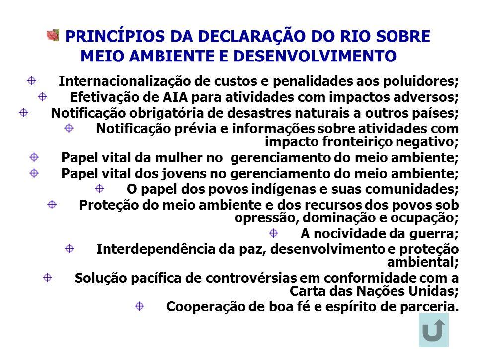 PRINCÍPIOS DA DECLARAÇÃO DO RIO SOBRE MEIO AMBIENTE E DESENVOLVIMENTO