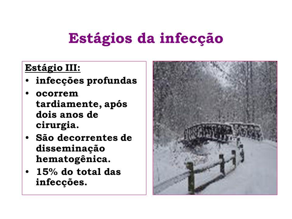 Estágios da infecção Estágio III: infecções profundas