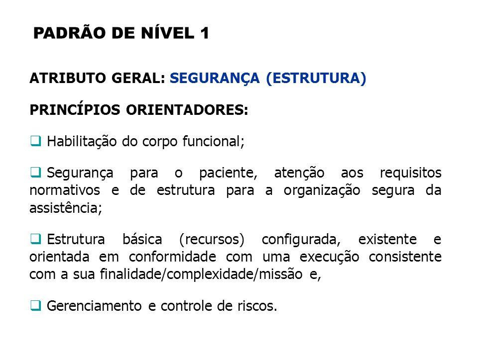 PADRÃO DE NÍVEL 1 ATRIBUTO GERAL: SEGURANÇA (ESTRUTURA)