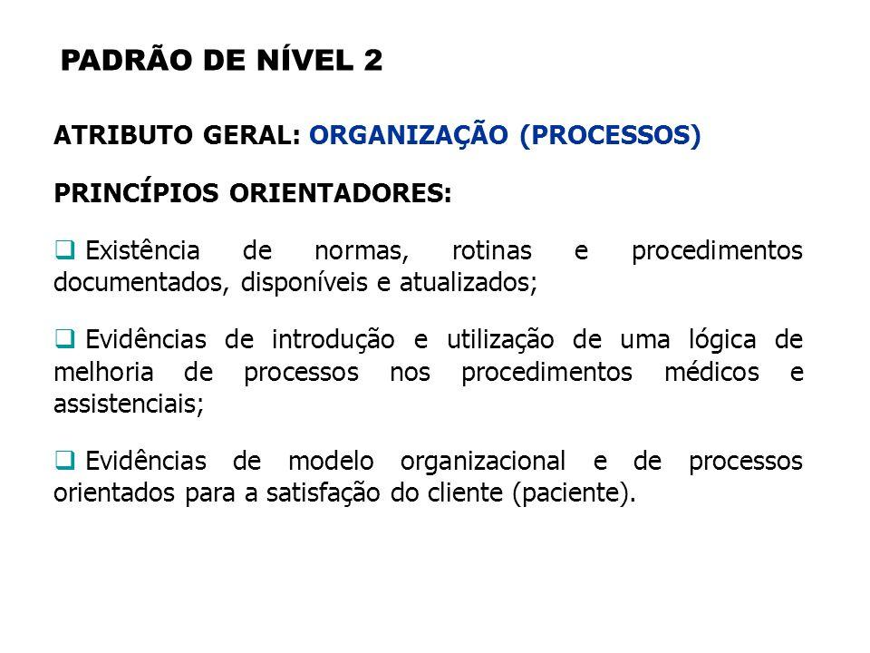 PADRÃO DE NÍVEL 2 ATRIBUTO GERAL: ORGANIZAÇÃO (PROCESSOS)
