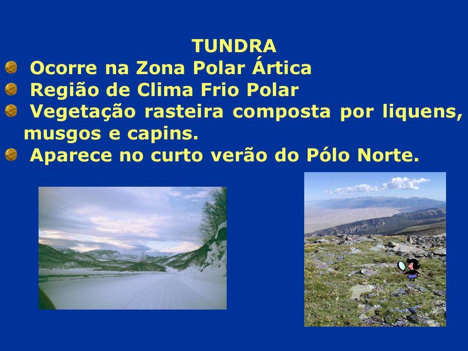 TUNDRA Ocorre na Zona Polar Ártica. Região de Clima Frio Polar. Vegetação rasteira composta por liquens, musgos e capins.