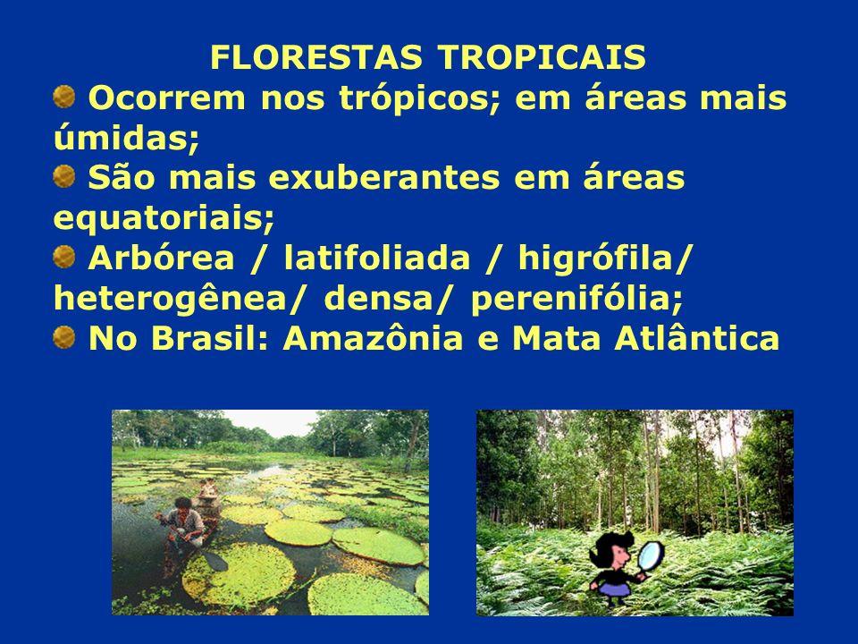 FLORESTAS TROPICAIS Ocorrem nos trópicos; em áreas mais úmidas; São mais exuberantes em áreas equatoriais;