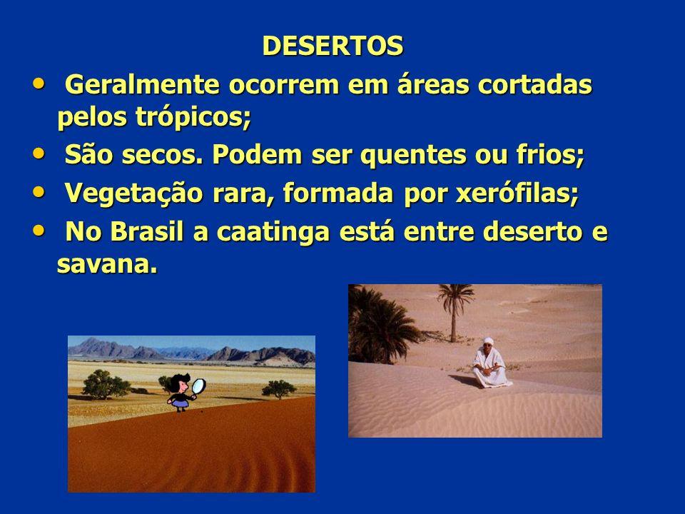 DESERTOS Geralmente ocorrem em áreas cortadas pelos trópicos; São secos. Podem ser quentes ou frios;
