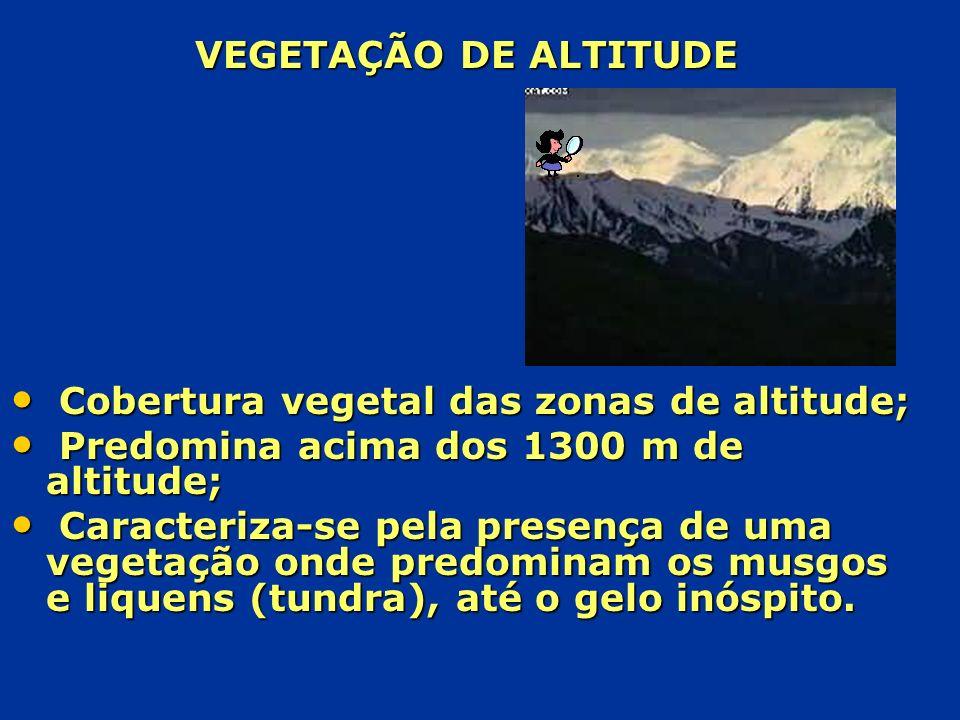 VEGETAÇÃO DE ALTITUDE Cobertura vegetal das zonas de altitude; Predomina acima dos 1300 m de altitude;