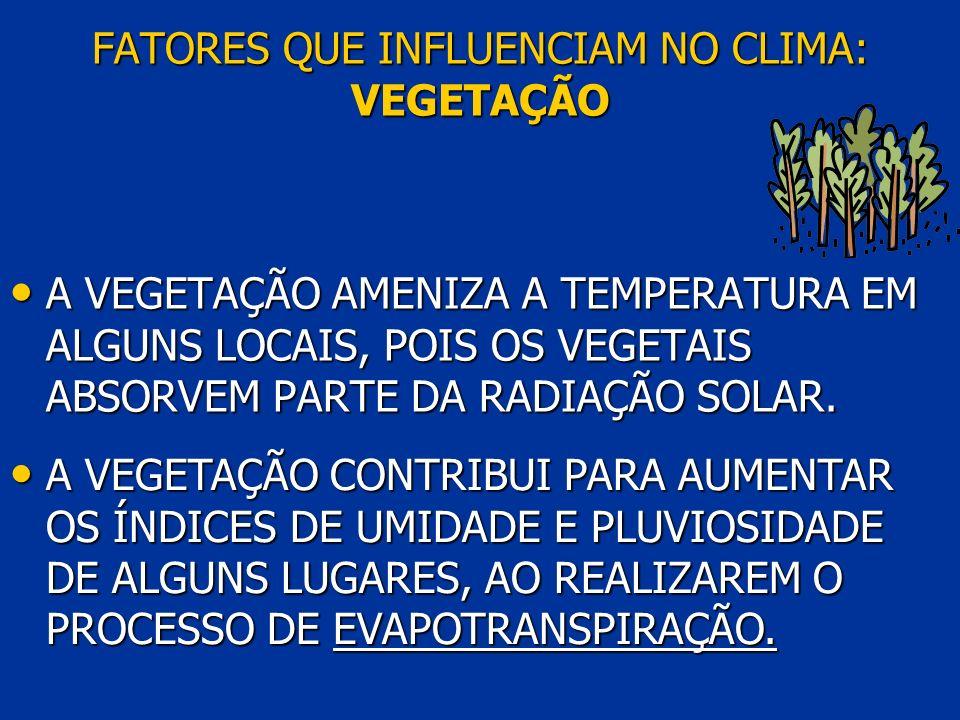 FATORES QUE INFLUENCIAM NO CLIMA: VEGETAÇÃO